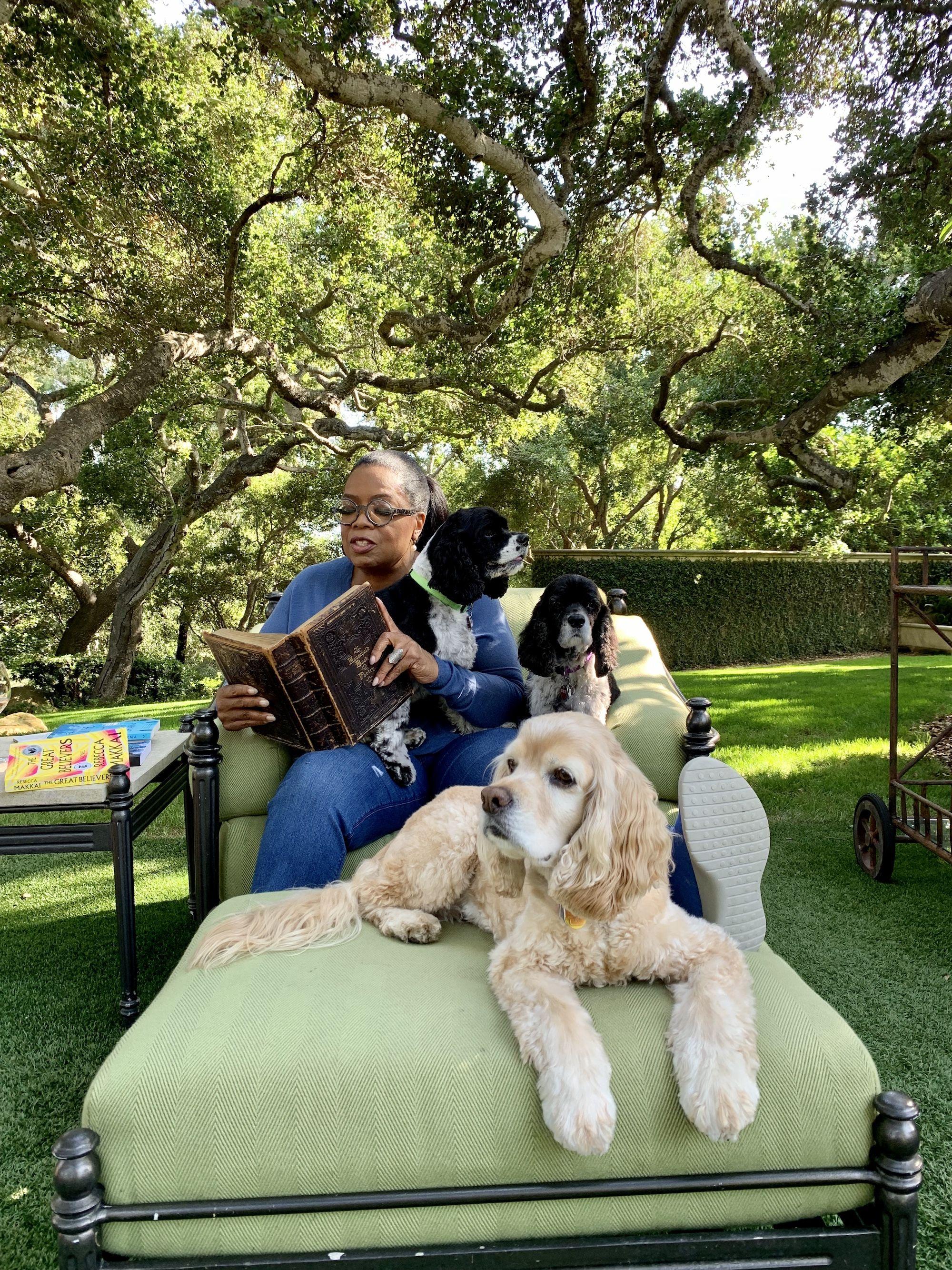 Please Enjoy These Photos of Oprah's Dogs