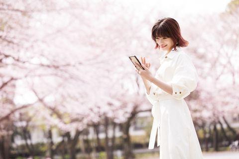 White, Pink, Spring, Flower, Blossom, Plant, Costume, Photography, Cherry blossom,