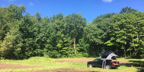Sky, Natural environment, Grass, Tree, Grassland, Wilderness, Rural area, Pasture, Trail, Farm,