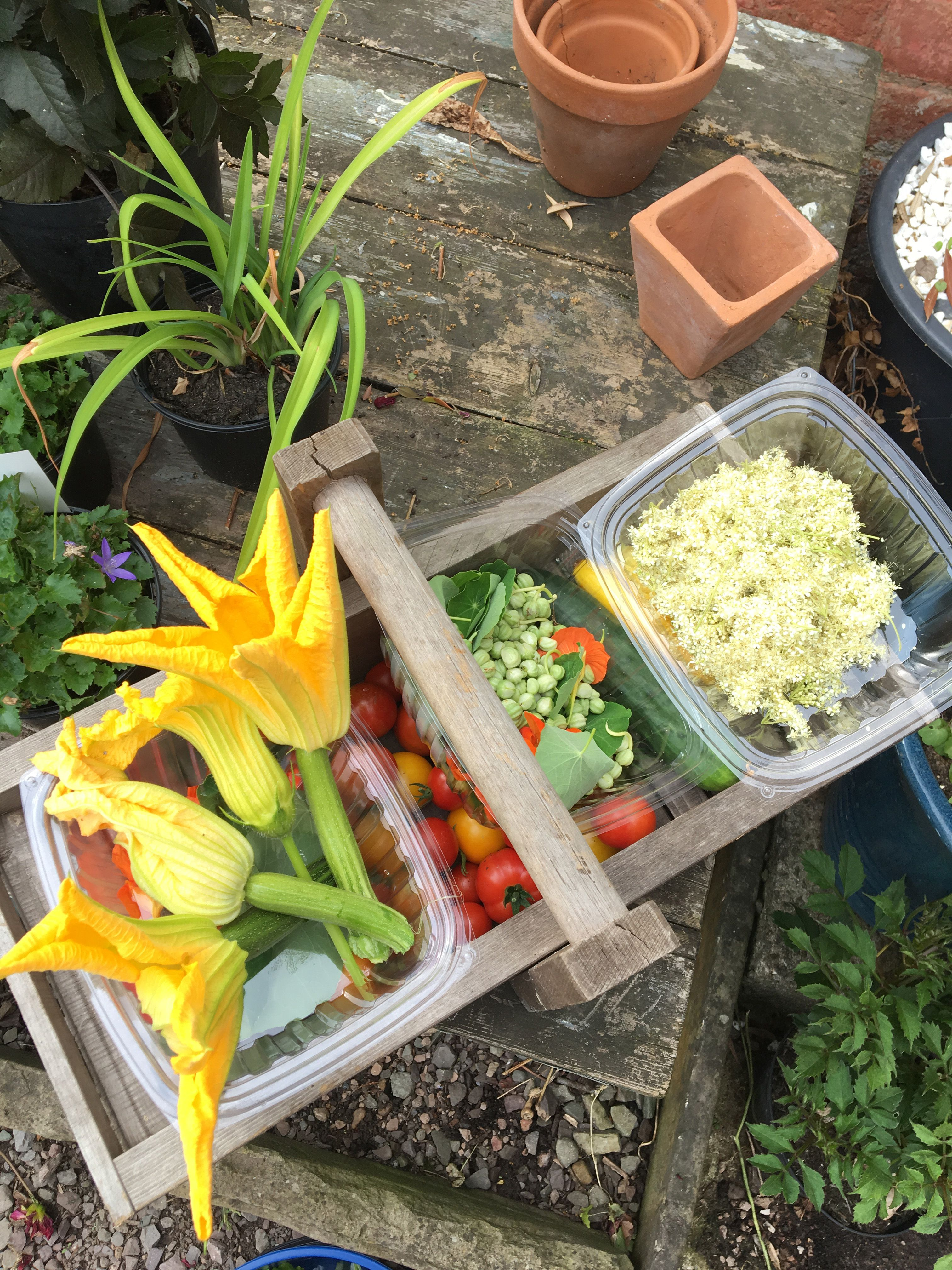 We learnt how to cook with edible plants and flowers in Abergavenny, Wales