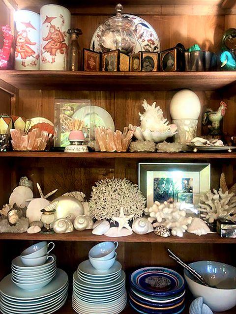 bookshelf with shells