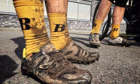 footwear, human leg, yellow, leg, sock, shoe, tree, calf, mud, trunk,