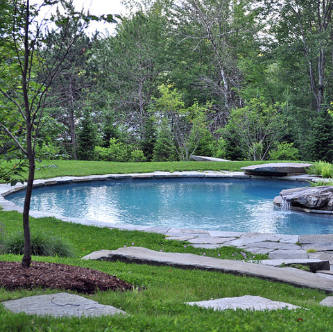 swimming pool in organic setting