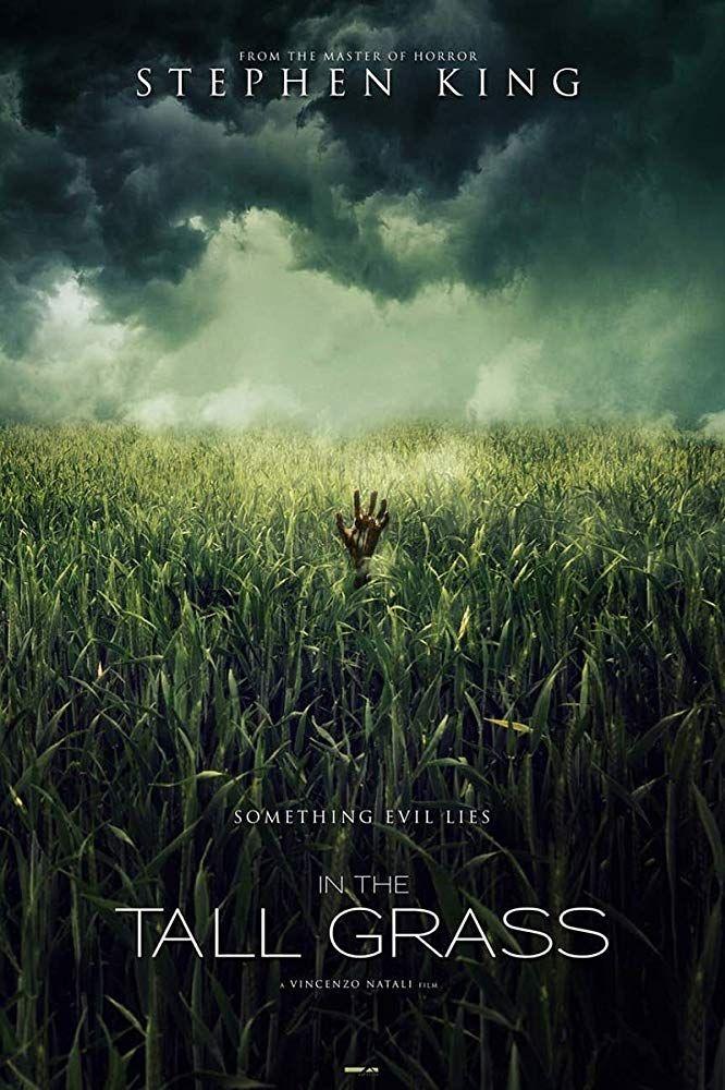 Últimas películas que has visto - (Las votaciones de la liga en el primer post) - Página 6 In-the-tall-grass-poster-pelicula-netflix-1564560469