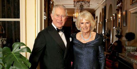 HRH The Prince of Wales Birthday Portrait