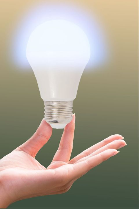 incandescent bulb   v