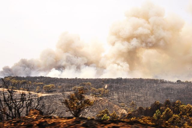 oristano, italy   20210725 a  view of hills burnt by wildfires on the south west coast of sardinia, one of italys islands photo by alessandra chergiakontrolablightrocket via getty images