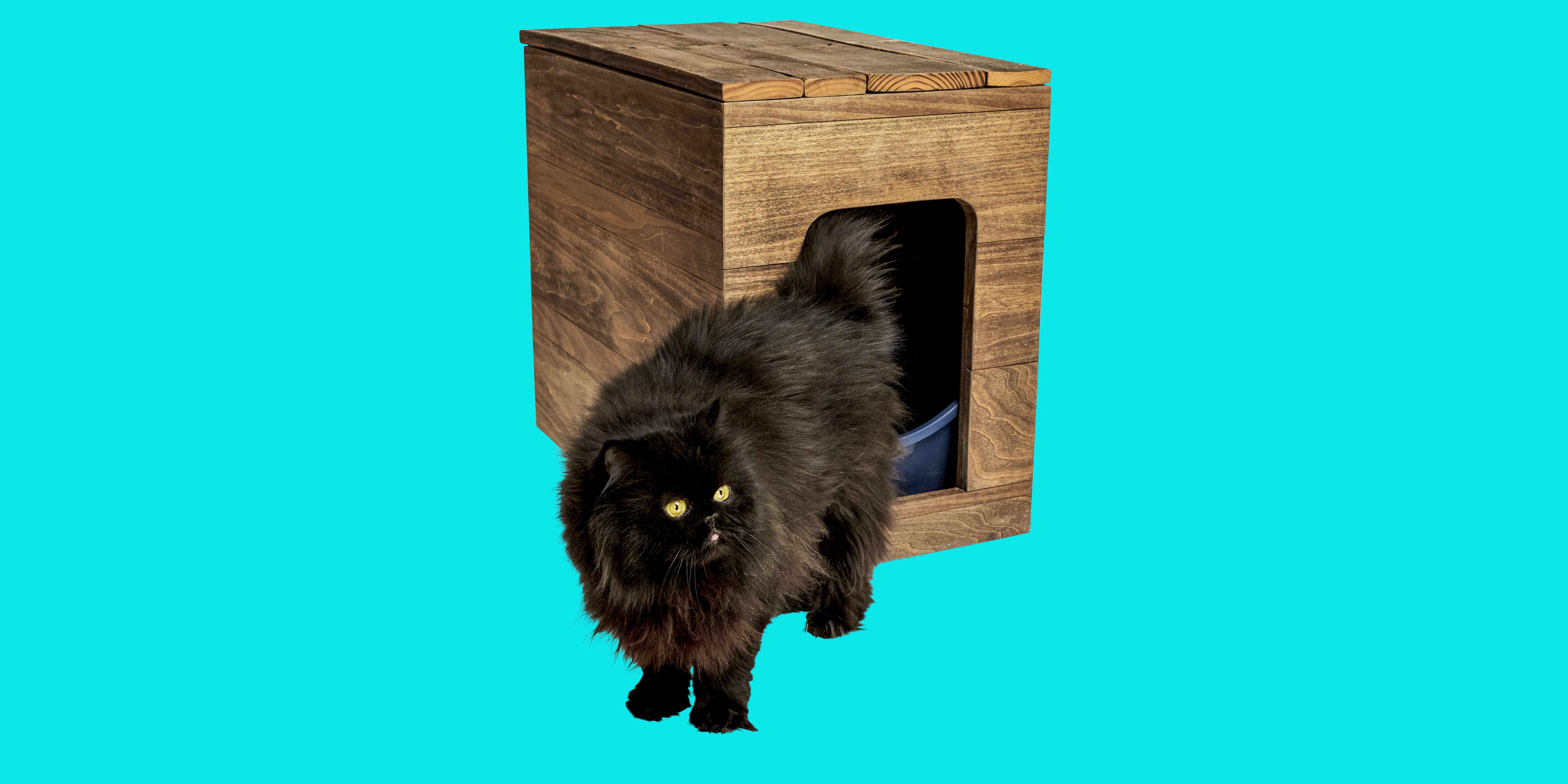 Make Your Own Cat Litter Box