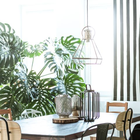 Industrial dining room with wardrobe