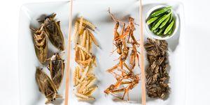 insecten-eten