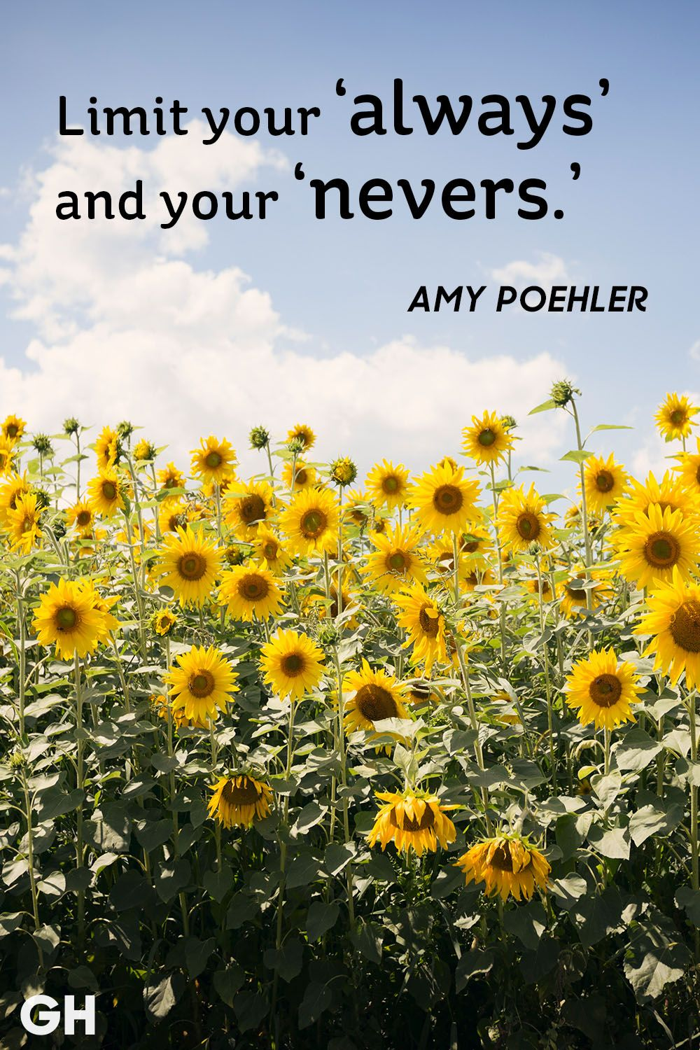 amy poehler inspirational quote