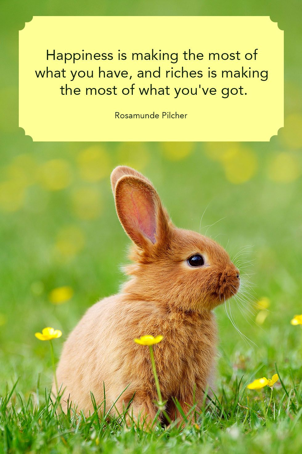 40 Famous Country Quotes About Life Short Inspirational Sayings