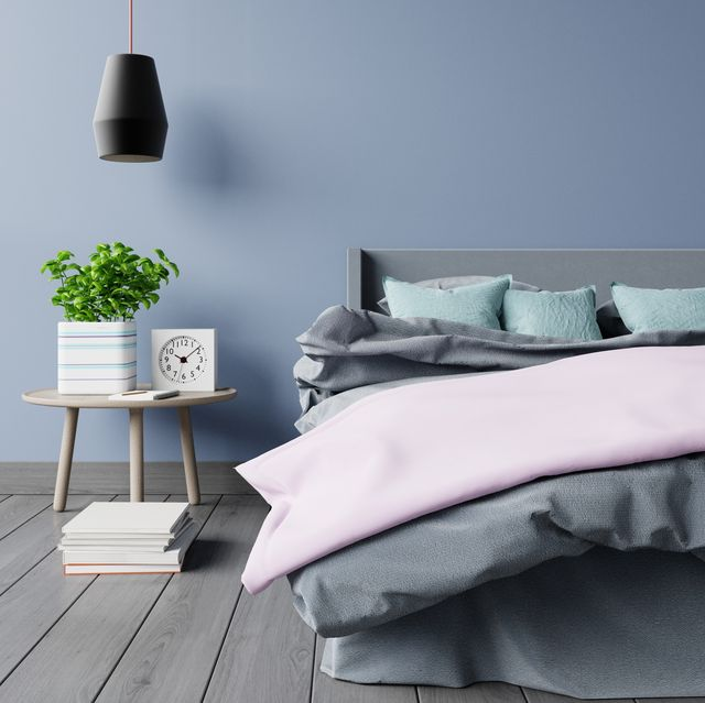 15 Best Bedroom Plants Plants For Bedroom That Clean Air