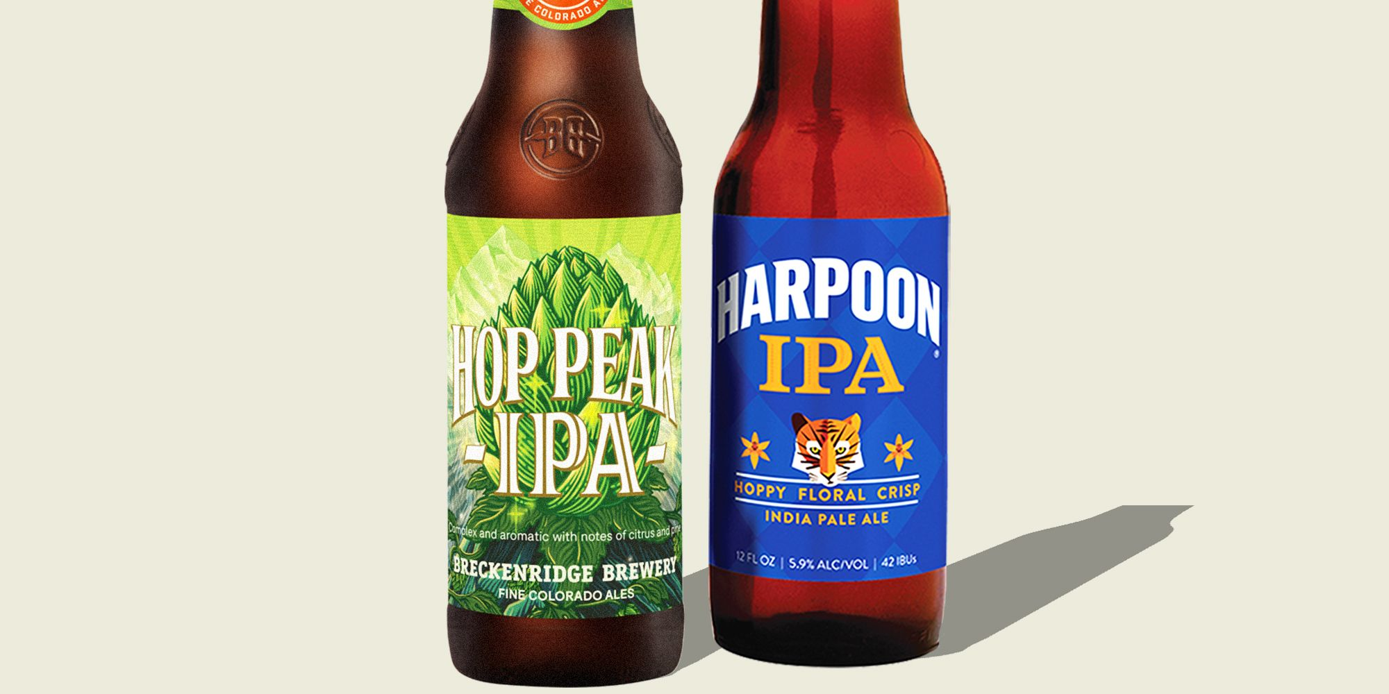 The 10 Best IPAs to Drink, As Recommended by Beer Experts