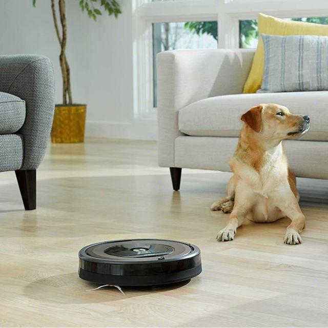 irobot roomba 960 on living room floor with dog