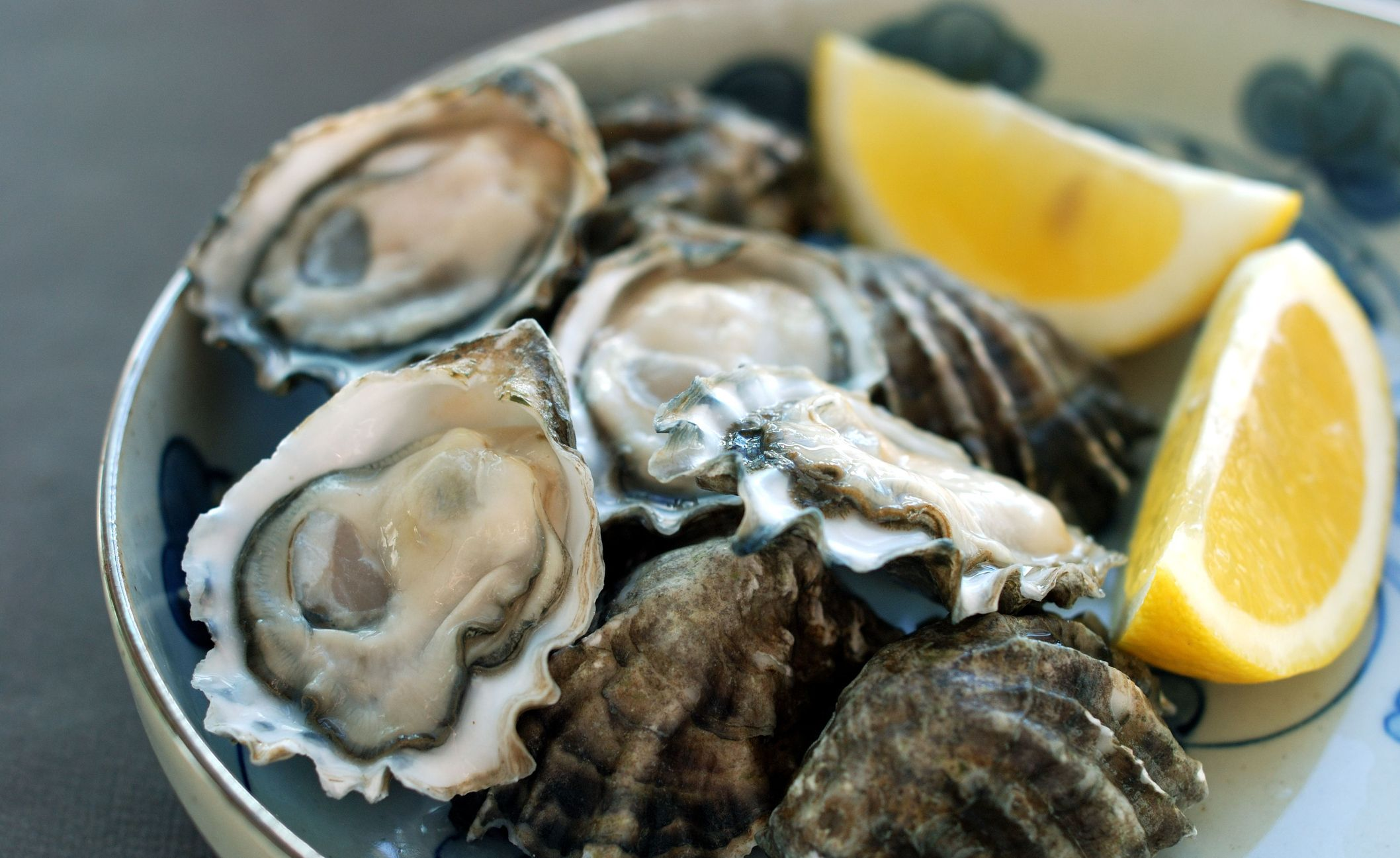iron rich foods oysters