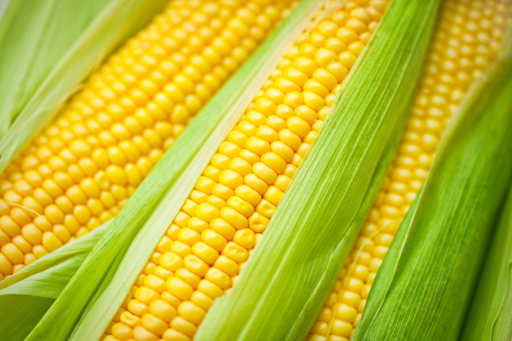 Is Corn a Grain? Yes, And It's Also a Fruit and a Vegetable