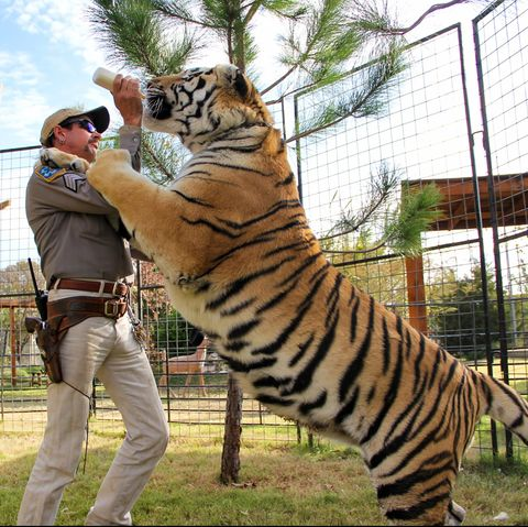 Is Tiger King's G.W. Zoo Still Open in 2021? Here's What We Know