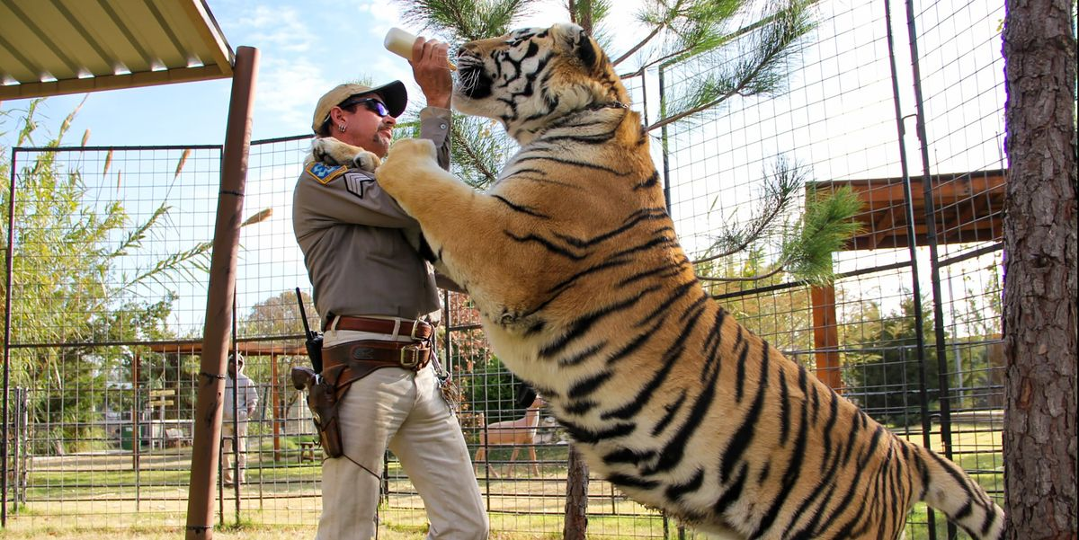 Jeff Lowe Is Rebranding the G.W. Zoo from 'Tiger King'