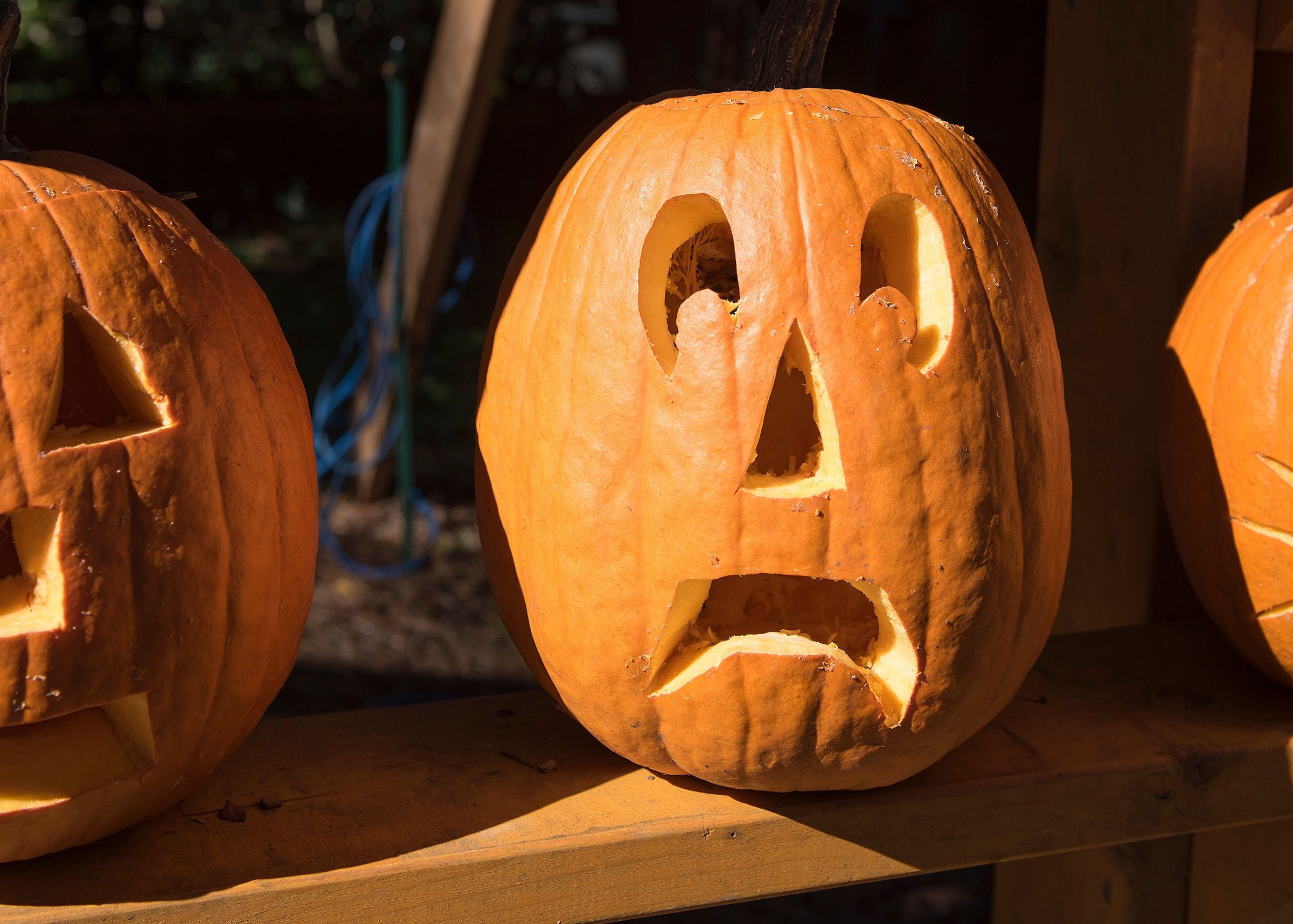 Current Events For Halloween 2020 Is Halloween 2020 Canceled Due to COVID 19?   Is Trick or Treating