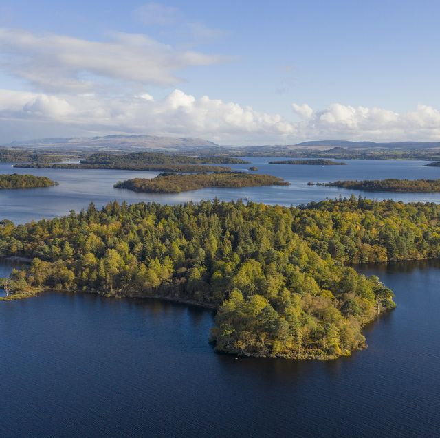 an island of around 103 acres situated off the western shore of southern loch lomond is for sale
