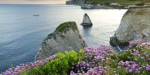 Isle of Wight scenic image