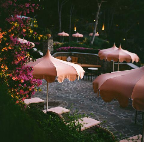 Розовые зонтики