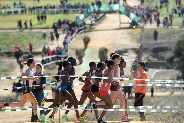 sports, running, recreation, athletics, individual sports, athlete, cross country running, exercise, crowd, multi sport event,