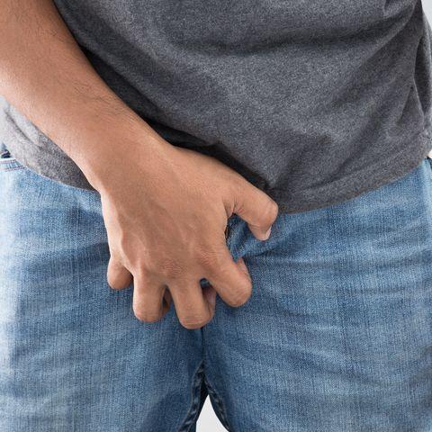 penisul genital