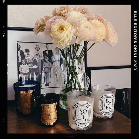Mason jar, Flower, Still life photography, Plant, Rose, Cut flowers, Drinkware, Vase, Still life, Tableware,