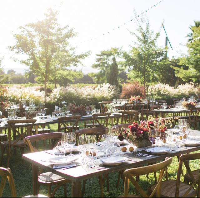 Restaurant, Table, Meal, Banquet, Lunch, Party, Rehearsal dinner, Event, Tree, Furniture,