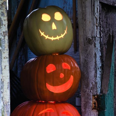 Jack Stack Pumpkin