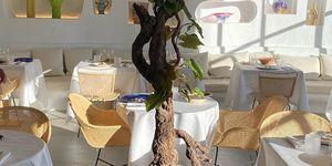 jacquemus-restaurant-oursin