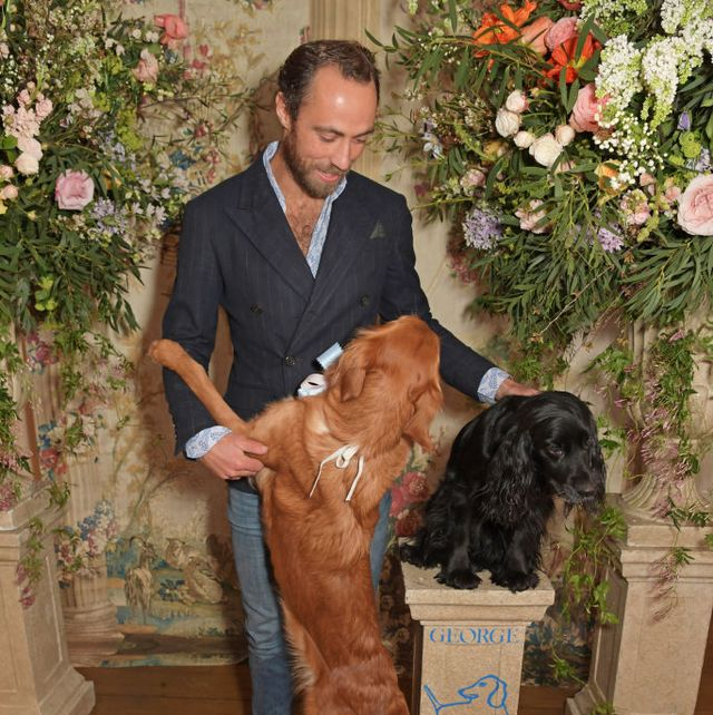 james middleton launch of the george charitable dogs committee at george club