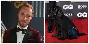 james middleton kate brother dog red carpet