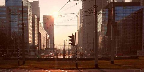 stephanie pander vertelt alles over hoe een stadswandeling met een gids extra leuk wordt