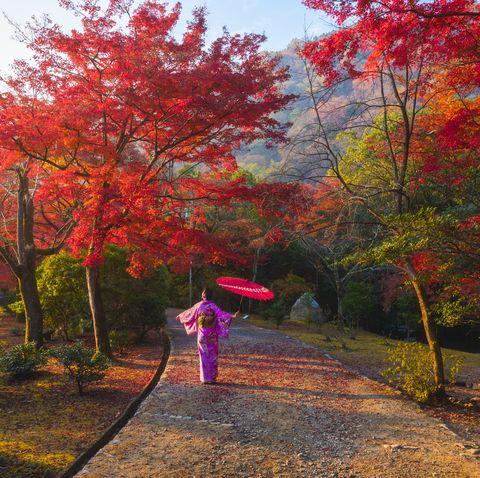 Japanese woman enjoying the beauty koyo season, Arashiyama, Kyoto, Japan