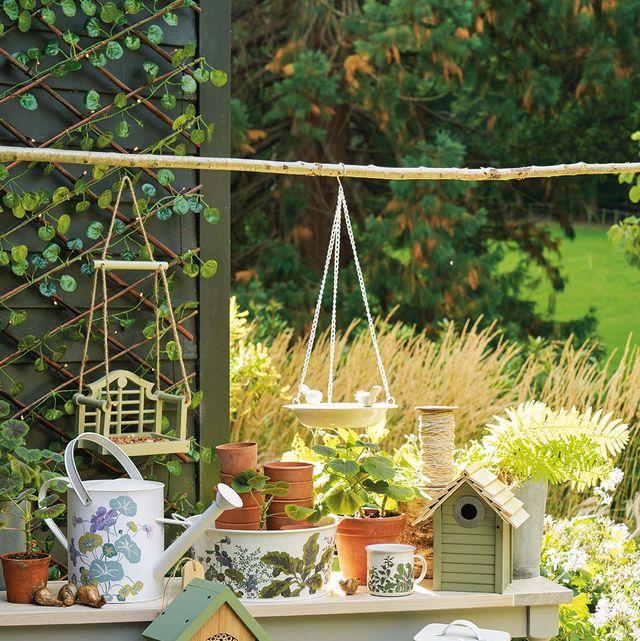 Garden, Flowerpot, Botany, Table, Yard, Plant, Backyard, Herb, Houseplant, Furniture,