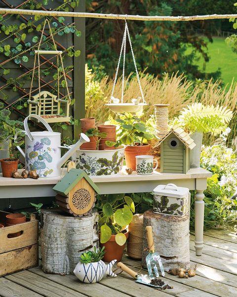 Macetas con plantas y flores en el jardín