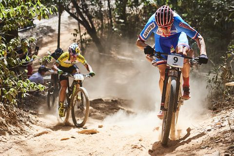 2017 Mountain Bike World Championships