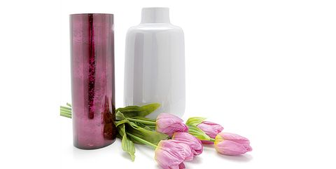 Product, Pink, Flower, Plant, Shampoo, Petal,