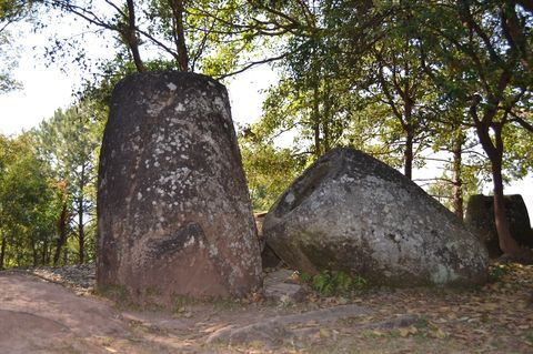 Rock, Tree, Megalith, Woody plant, Plant, Trunk,