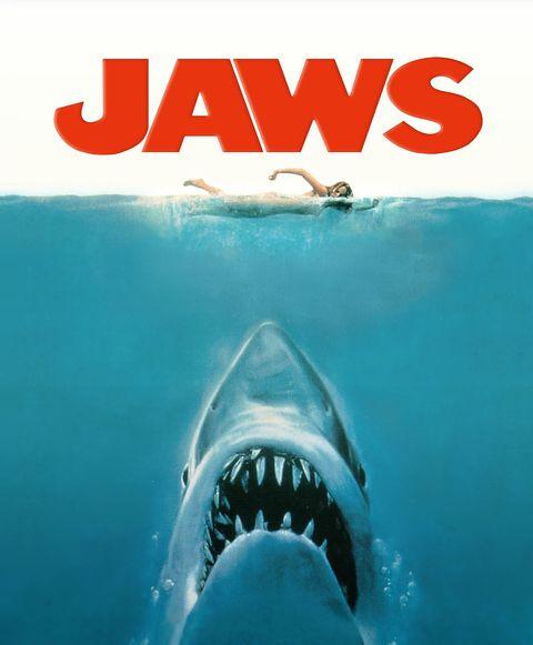 Shark, Great white shark, Lamniformes, Cartilaginous fish, Fish, Lamnidae, Sand tiger shark, Water, Tiger shark, Jaw,