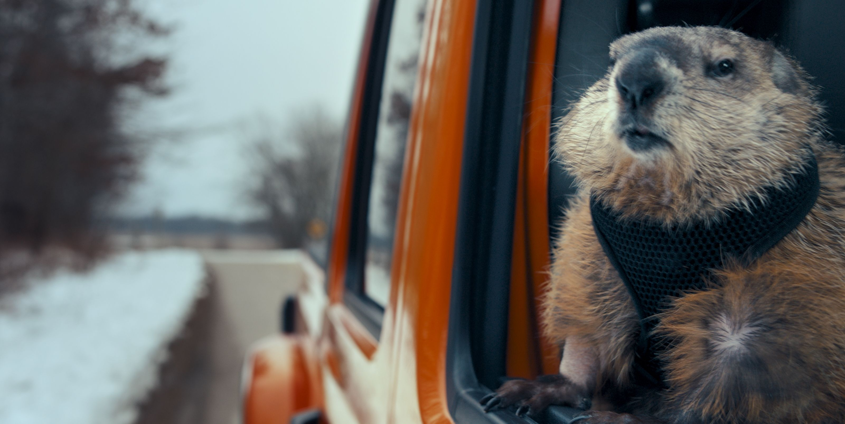 Jeep Coronavirus Ad Brings Back Bill Murray's Groundhog Day Character (Again)