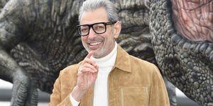 jeff goldblum,jeff goldblumparque jurasico,parque jurasico estilo,parque jurasico moda