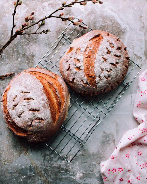 Food, Cuisine, Dish, Bread, Bun, Baked goods, Soda bread, Ingredient, Powdered sugar, Sourdough,