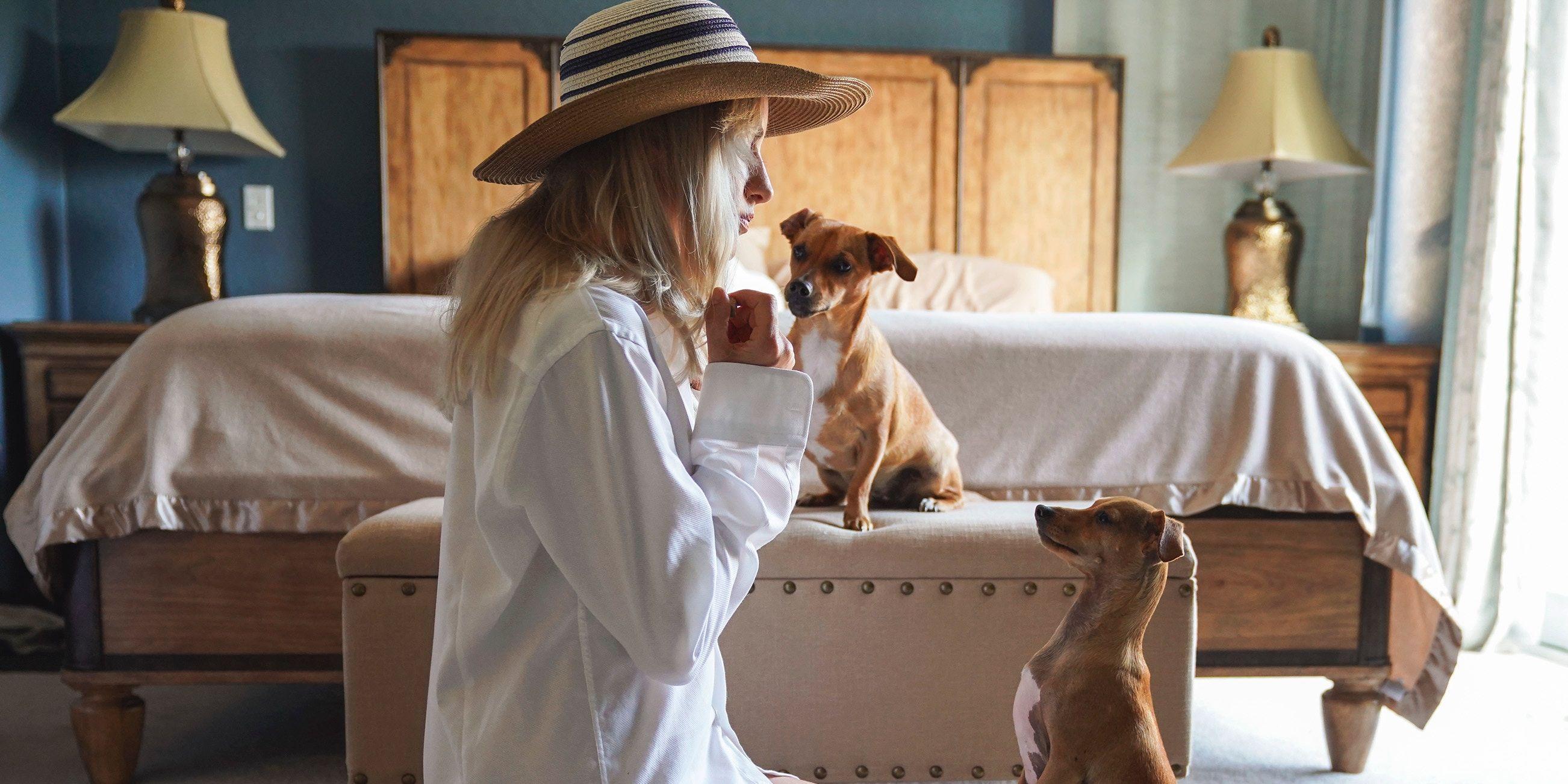 honden-praten