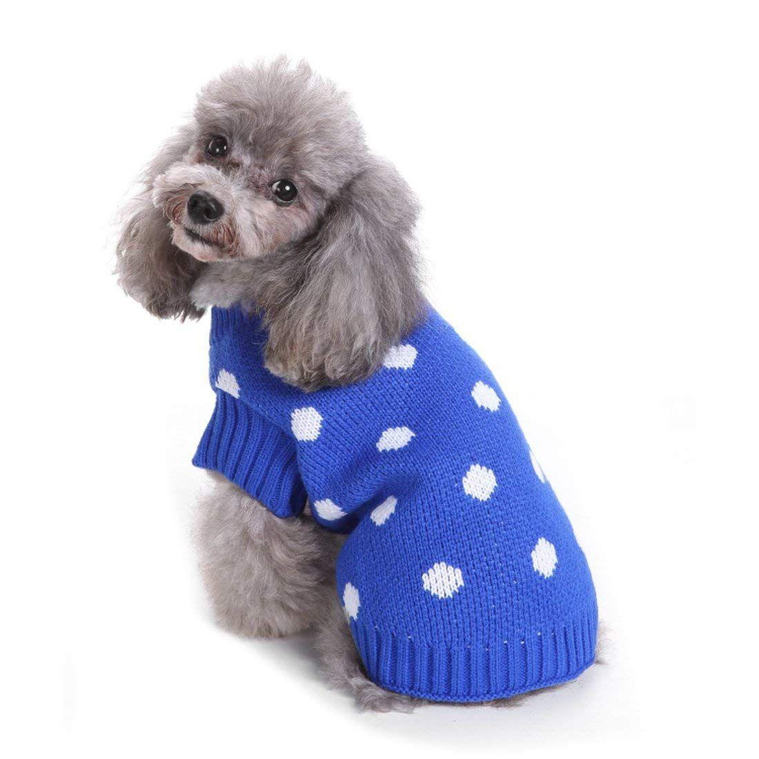 Perro con jersey azul de lunares blancos