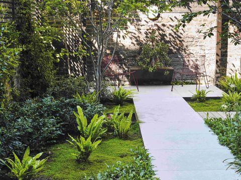 a contemporary garden designed by adolfo harrison