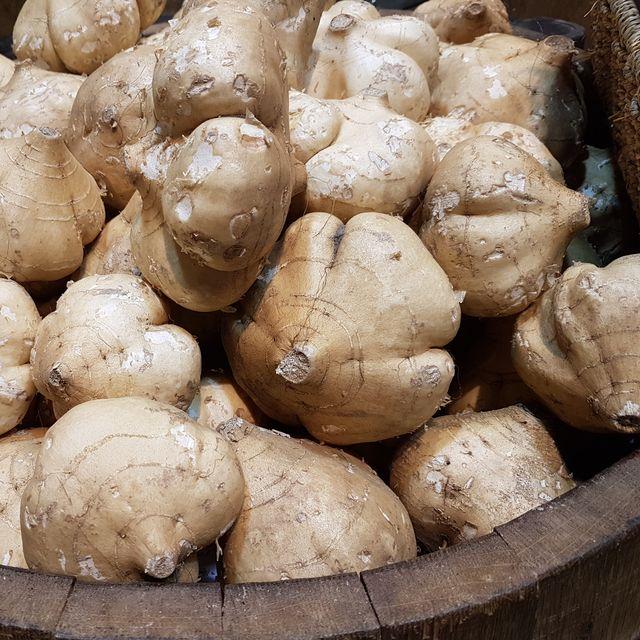 jicama, also known as yam bean